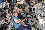 ISS-56 Drew Feustel and Oleg Artemyev train in the Zvezda.jpg