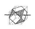 Illustration from Foucauld's Dictionnaire touareg, page 1334.png