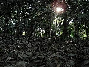 Parque da Independência - Image: Ipiranga, Parque da Independência