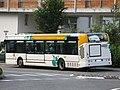 Irisbus Citelis 12 n°2041 (vue arrière gauche) - Stac (De Gaulle, La Motte-Servolex).jpg