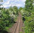 Ivanhoe Line to Ashby de la Zouch - geograph.org.uk - 174870.jpg