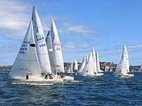 J-24 yacht racing, Sydney Harbour, Australia