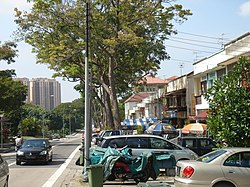Row of shophouses next to Jalan Kayu, famous to food-hunters for its roti prata.