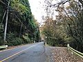 Japan National Route 500 in Ochiai, Soeda, Tagawa, Fukuoka 5.jpg