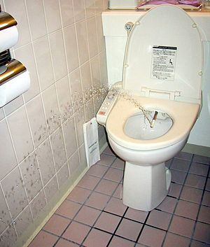 Toilets in Japan - A cleansing jet of water designed to cleanse the anus of the user of this bidet-style toilet