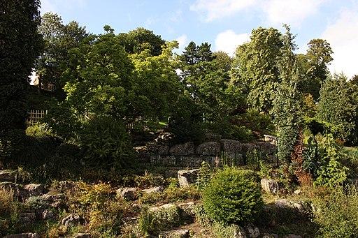 Japanese garden, Avenham Park, Preston-15073023626