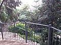 Jardín de Monforte 88.jpg