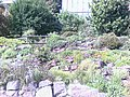 Jardin botanique (Strasbourg) (5).jpg