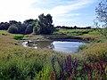 Jersey Farm Open Space, Sandridge (41145672834).jpg