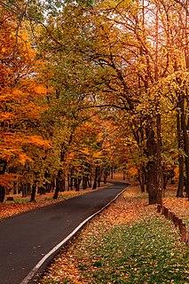 Košutnjak Park-forest and neighborhood of Belgrade