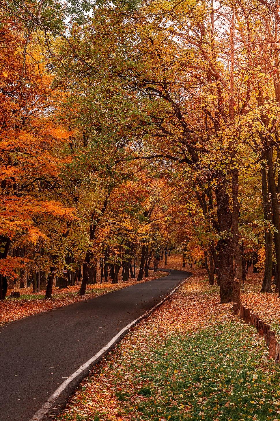 Jesen u Kosutnjaku