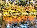 Jesiennie... - panoramio (1).jpg