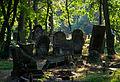 Jewish cemetery Otwock Karczew Anielin IMGP6766.jpg