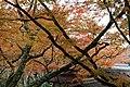 Jingo-ji (6920614316).jpg
