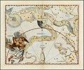 Johannes Hevelius - Eridanus.jpg