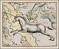 Johannes Hevelius - Monoceros.jpg