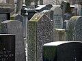Juedischer Friedhof Mannheim 05 fcm.jpg
