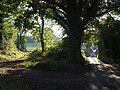 Junction near Clampitt - geograph.org.uk - 578666.jpg