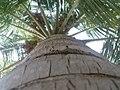 K.Pudur Village CT.JPG