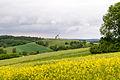 Kalletal - 2015-05-30 - Windmühle im LSG-3919-0043 (11).jpg