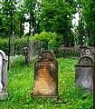 Kamienna Góra, cmentarz żydowski -Aw58- DSCF7713.jpg