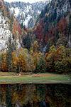 Kammersee01 Herbst.jpg