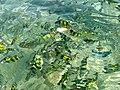 Kay Island - panoramio.jpg