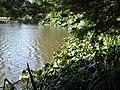 Kew Gardens - landscape.jpg