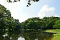 Kings Lake - Indian Botanic Garden - Howrah 2012-09-20 0074.JPG