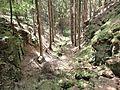 Kleine Schlucht in der Fürstenleite - panoramio.jpg