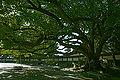 Kobe Suma Rikyu Park29n4592.jpg