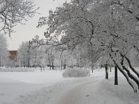Kolpino SPb January2010 813.jpg