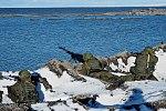 Kotelny Island 07.jpg