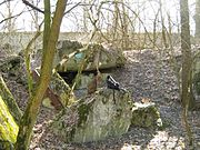 Kyiv Pillbox 409 1.jpg