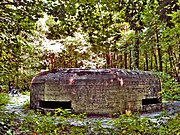 Kyiv Pillbox 417.jpg