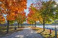 L'automne au Vieux-Port de Montréal (15460188831).jpg
