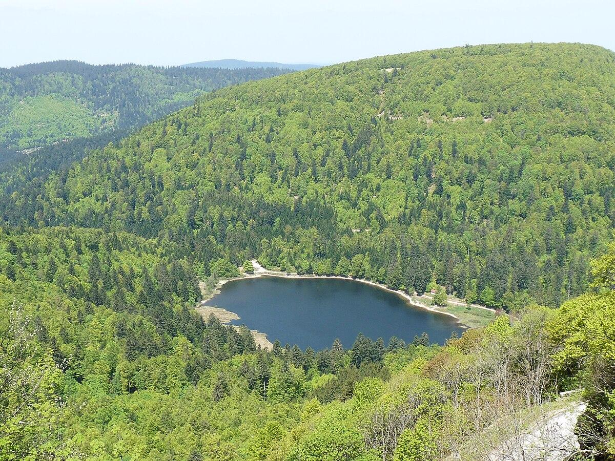 Quel est sur le fond du lac lanier