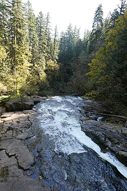 Lacamas Creek, looking downstream, October 2020.jpg