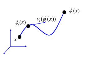 Bayesian estimation of templates in computational anatomy - Image: Lagrangian flow