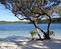 Lake McKenzie, Fraser Island.jpg