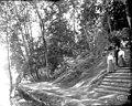 Lake Washington walkway, Alaska Yukon Pacific Exposiition, Seattle, Washington, 1909 (AYP 162).jpeg