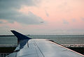 Landing SFO sunset.jpg