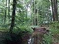 Landschaftsschutzgebiet Waldgebiete bei Dielingdorf und Handarpe LSG OS 00025 Datei 22.jpg