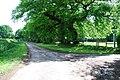 Lane near Jones's Wood Withington - geograph.org.uk - 440493.jpg