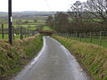 Lane near Wern-felen farm - geograph.org.uk - 673590.jpg