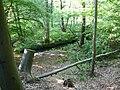 Langenfeld Schwanenmühle 0024.jpg