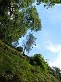 Le boel - panoramio (3).jpg