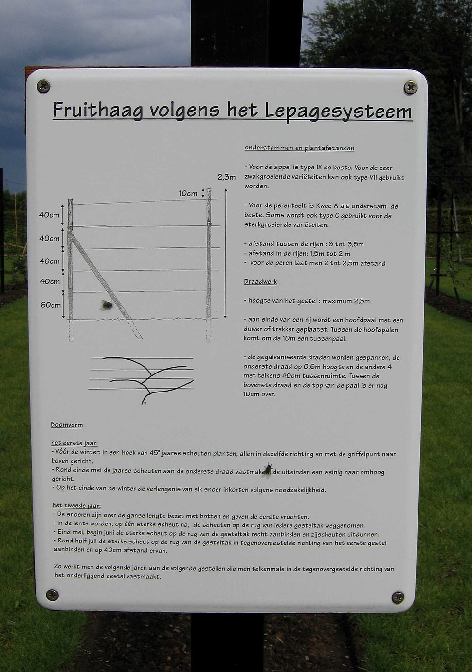 Lepage fruittreeform description