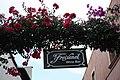Letrero Bar Tequisquiapan.jpg