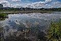 Liebiadziny reserve (Belarus) 30.jpg